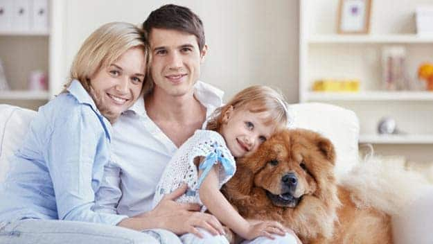Wills & Trusts dog-young-family Direct Wills Banstead